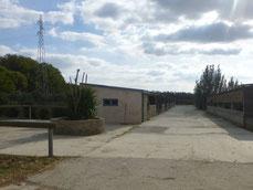 Pensions pour chevaux dans l'Aude