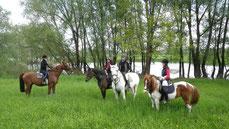 Fastenwandern &Reiten im Wendland