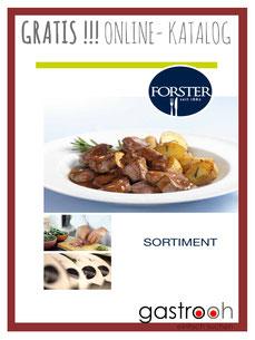 Forster Katalog