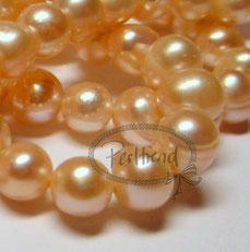 Süsswasser Perlen Creme-apricotfarben