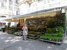 フランスには花屋さんが多い。誰に贈るのかな?それとも自分に?