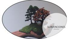 Subvenciones para el desarrollo de las zonas forestales