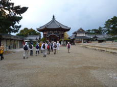 興福寺・南円堂
