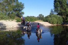 L'équitation, ce n'est seulment faire un sport c'est aussi apprendre à connaitre les chaveaux.