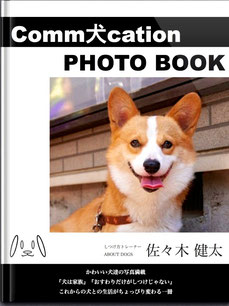 Comm犬cation