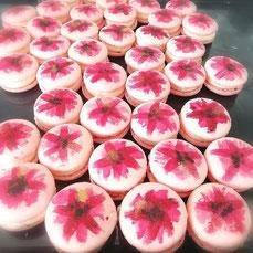 Macaron - Danielas Cake Dream
