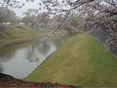 菊陽町、熊本城