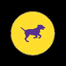 icone chien