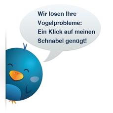 Wir lösen Ihre Vogelprobleme: nutzen Sie unser Kontaktformular.