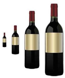 マグナムボトルワイン・コンクール (www.diariodegastronomia.com)