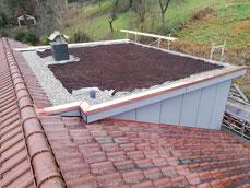 Flachdachgaube mit Dachbegrünung