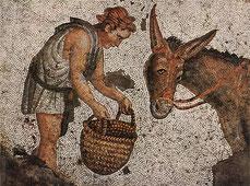Les Métamorphoses, également connu sous le titre L'Âne d'or (Asinus aureus), roman écrit par Apulée au II siècle.