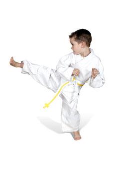 Rotes Fragezeichen, Vorzüge von Karate und Kickboxen TOWASAN Gruenwald