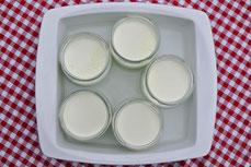 Joghurt aus dem Backofen - Nur mit der richtigen Temperatur wird der Joghurt stichfest.