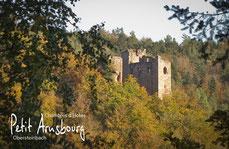Ansicht Chateau du Wasigenstein; Obersteinbach; Lembach; Alsace; Chambres d'Hotes Petit Arnsbourg; Ferienzimmer; Ferienwohnung; Pension; Bed & Breakfast; Karin; Marcel van Eekelen; Obersteinbach; Urlaub; Wandern; Klettern; Mountainbike; Reiten; Burgruine;