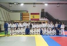 El judo en Valencia  es uno de los deportes en donde más éxitos y satisfacciones se han cosechado a nivel autonómico, nacional e internacional.