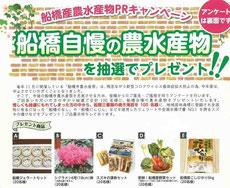 千葉県キャンペーン-船橋市農水産物プレゼント
