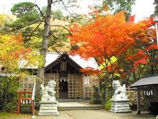春日山神社境内も見事です。