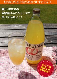 りんご屋たけむら りんごジュース