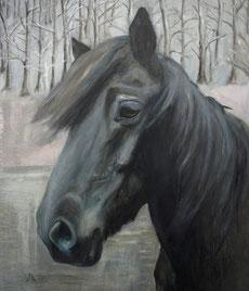 Islandstute Tinna, Öl auf Baumwollgewebe, 50 x 60 cm, 2010