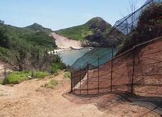 母島南崎のネコ侵入防止柵