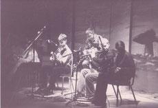 Traditional Irish Music Players