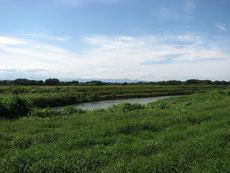実家近くを流れる荒川