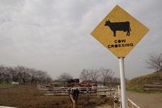 荒川河川敷の牧場に立っている標識