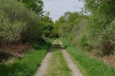 フィークルの田舎道