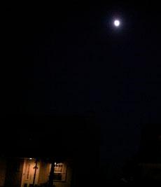 昨夜は 十三夜の月でしたね。先月の十五夜の月とこの十三夜の月両方を見るといいことあるそうな!それにしても、キレイな月でしたね。いいことありますように〜
