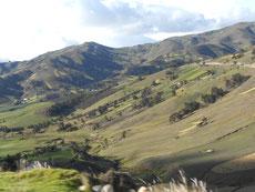 Fleckerlteppich über Hügel