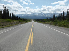 Wir ziehen am Alaska Hwy gen Norden. Mit 80 km/h und wenig Verkehr ist die Fahrt recht entspannt.