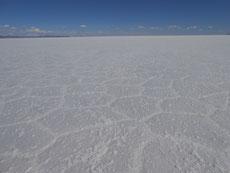 Hat's denn gerade geschneit? Nein, wir sind am groessten Salzsee der Welt, am Salar de Uyuni.