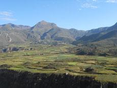 Das sehr fruchtbare Colca-Tal...