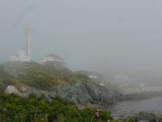 ...verzieht sich der Nebel oft erst um die Mittagszeit