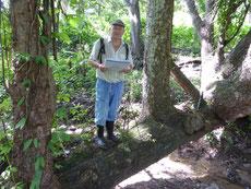 Mit Plan am Naturlehrpfad - die Sutter's haben im Anhang fast jeder Baum erklärt