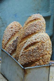 Brown Bread (Wheat, Barley, Millet)