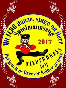 Sitzung Spielmannszug Niederdrees 2017