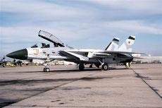 1/48 airfield tarmac Miramar