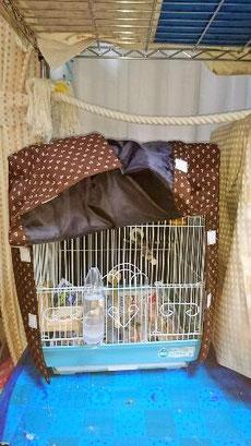 小鳥用おやすみカバー 鳥かごおやすみカバー おやすみカバー お休みカバー ゲージカバー 遮光カバー サークルカバー 手作り 夏 ヒーター