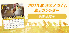 2019 オカメづくし卓上カレンダー