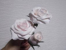 ごくごく淡いサーモンピンクのバラ