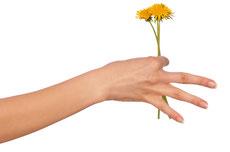 Handschmerzen in Mönchengladbach mit Schmerztherapie behandeln
