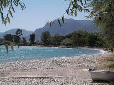 Strand von Rizomilos (5km  vom Haus)