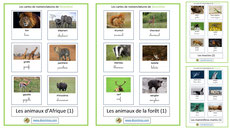 cartes de nomenclature animaux ecriture cursive script