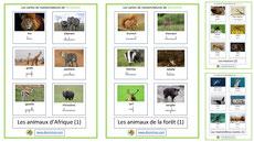 cartes de nomenclatures pdf a telecharger ecole montessori