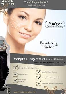 procea werbemittel