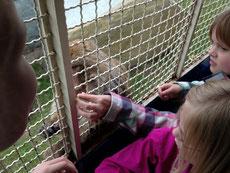 Pauline und Nele füttern die Affen