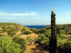 Aussicht/Umgebung Casa Alex, Figueira, Salema, Algarve