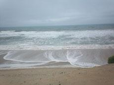 plage sur l'ocean